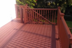 Deck with Fire Pit Color Trex