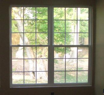Two Double Hung Windows